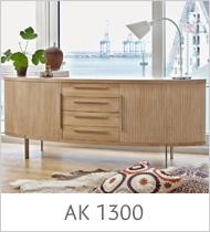 ak-1300