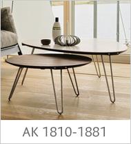 ak-1810-1881